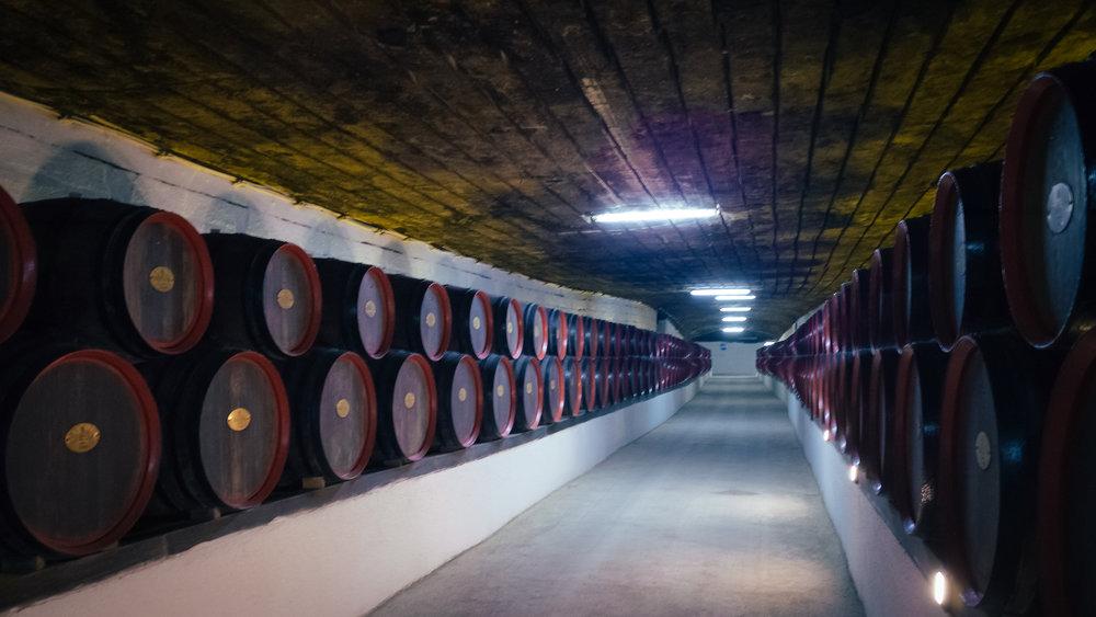 Τα βαρέλια κρασιού στην Κρικόβα