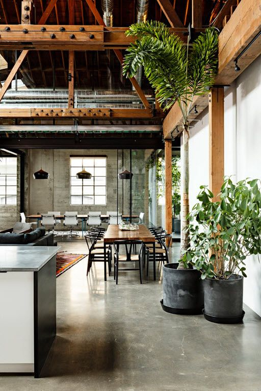 GREENERY + HIGH CEILINGS