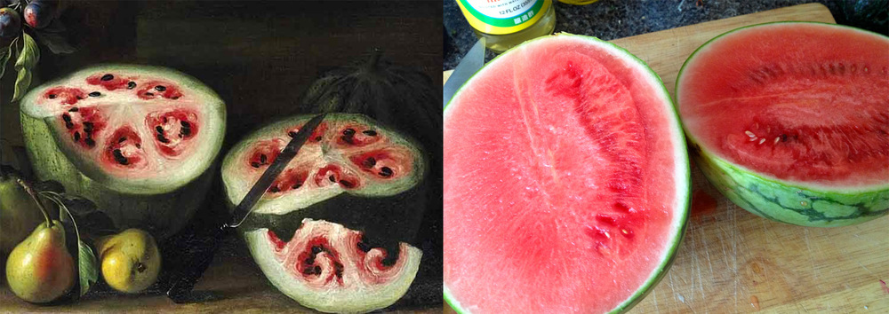 old and new watermelon.jpg