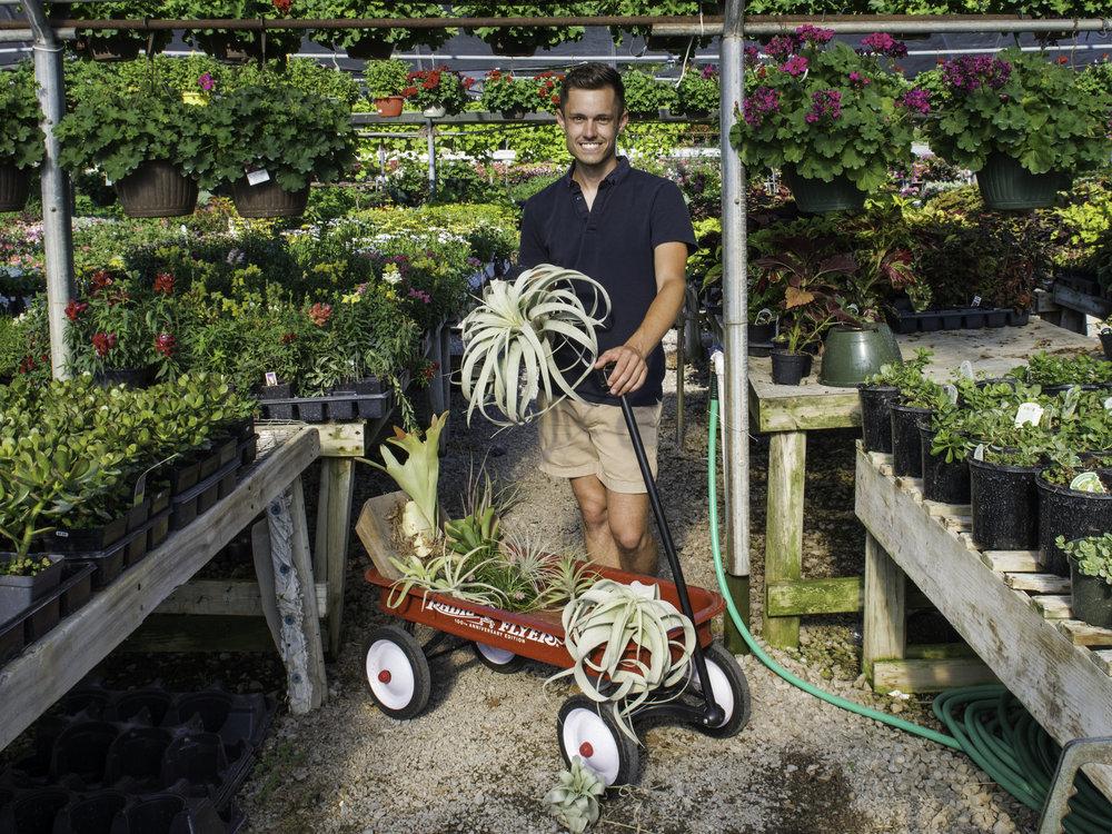 True Vine | The People's Plants