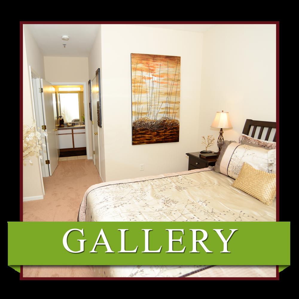 Newport Ridge Apartments: Brookridge Heights Apartments