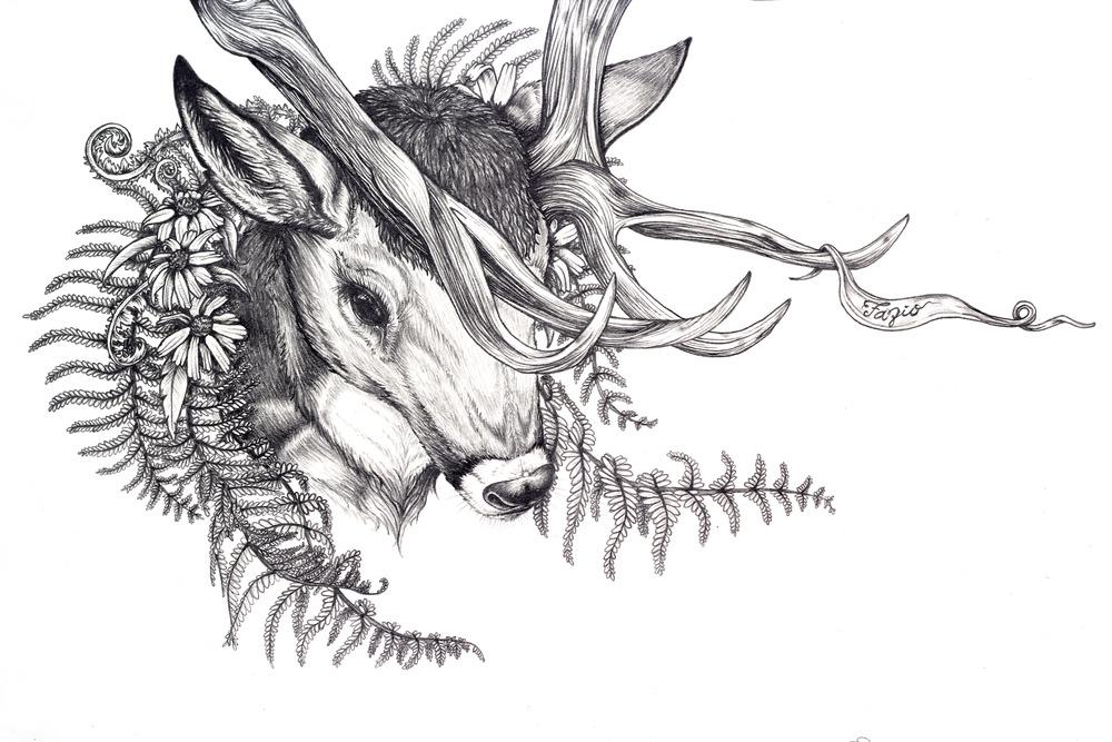stag cu face with fazio.jpg