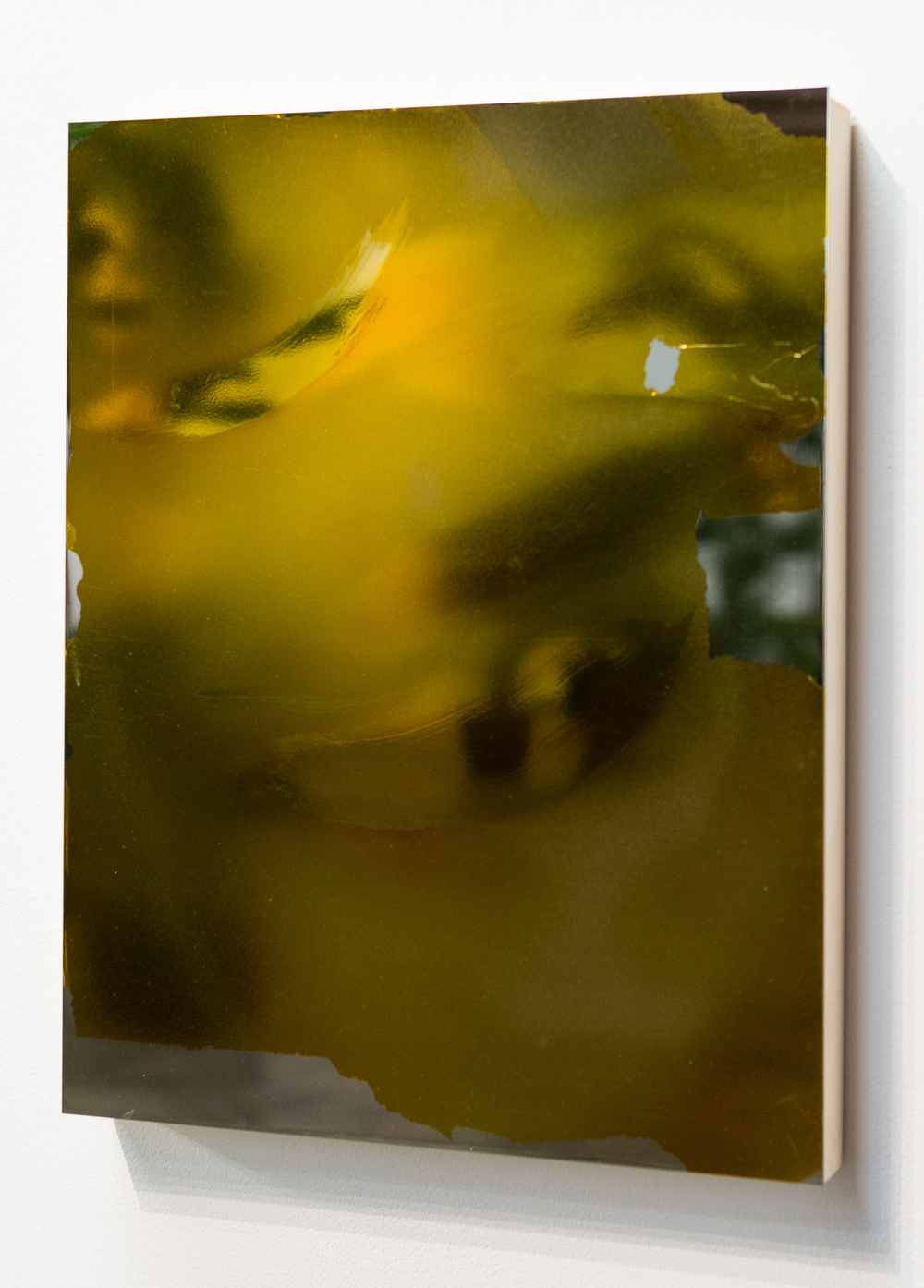 MLSL_10_Bunny  , 2015    Gold tint on stainless steel    18 x 14 in (45.72 x 35.56 cm)