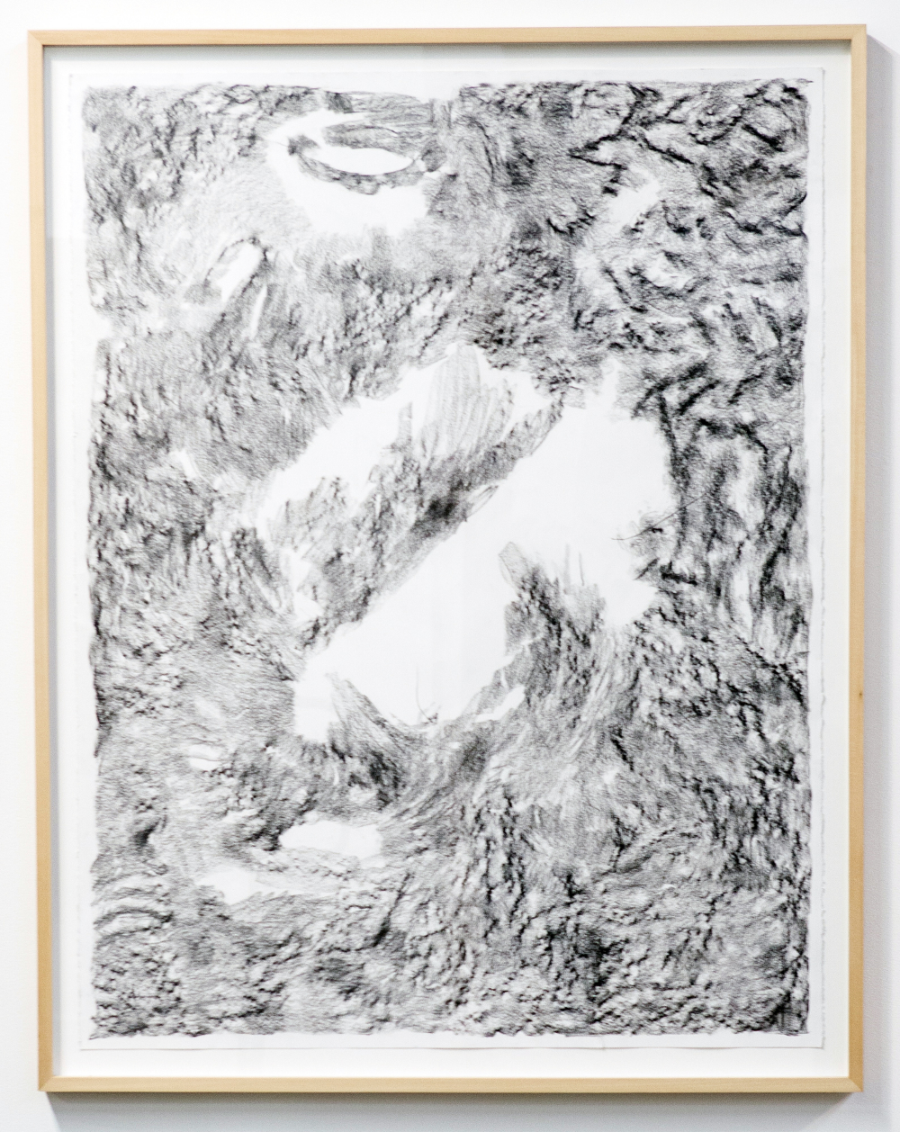 MLSL_01_ElysianPark    Conté on rag paper    Paper 49.75 x 38.5 in (126.37 x 97.79 cm)   Framed 52.25 x 42.5 in (132.72 x 107.95 cm)    2015