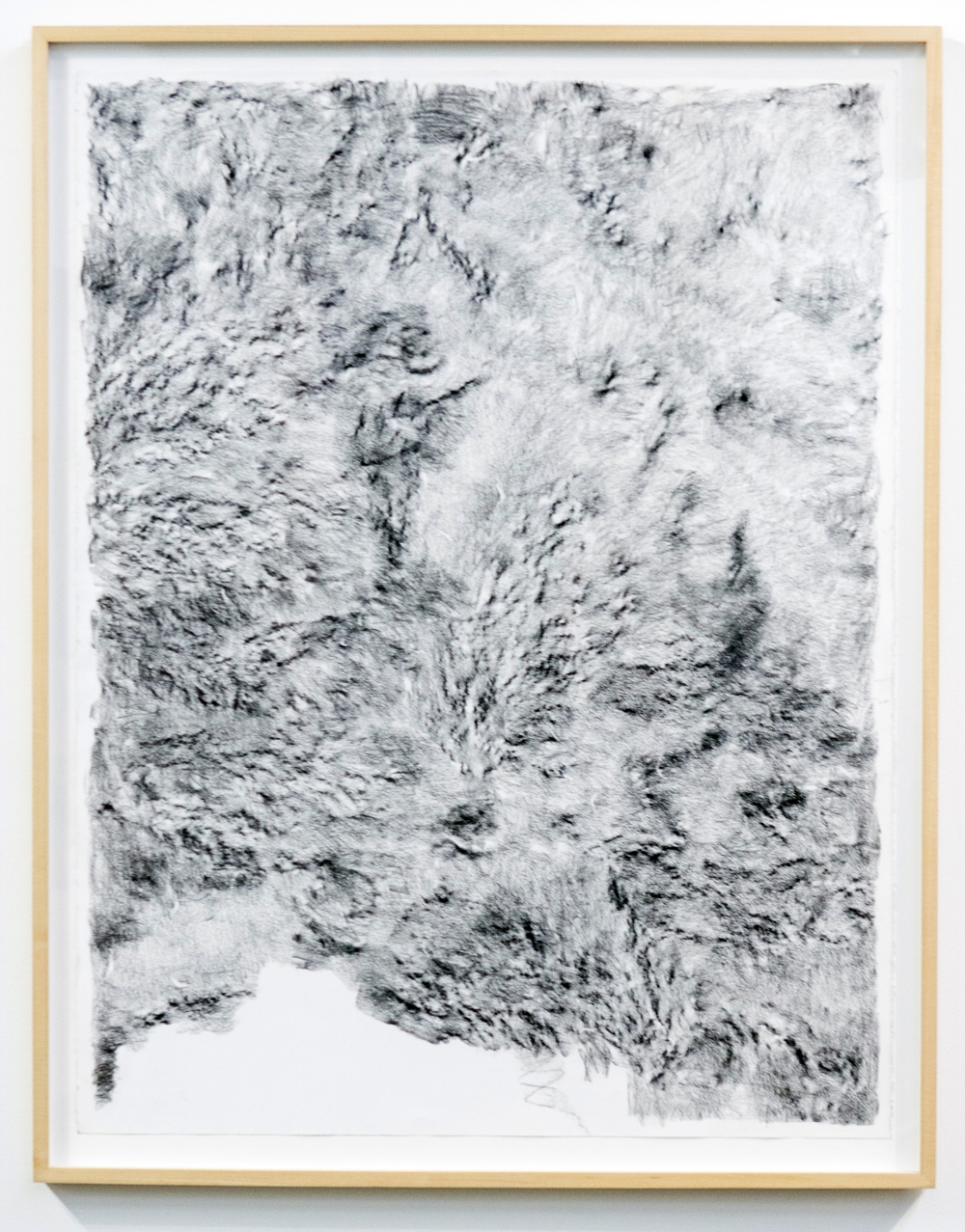 MLSL_02_ElysianPark Conté on rag paper Paper 49.75 x 38.5 in (126.37 x 97.79 cm) Framed 52.25 x 42.5 in (132.72 x 107.95 cm) 2015
