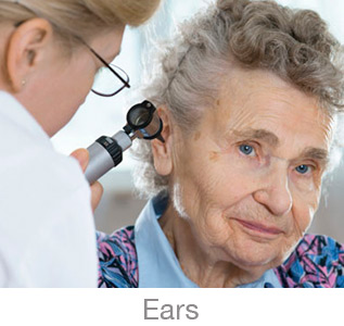 ent ears checkup senior