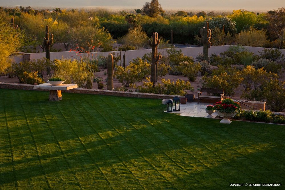 paradise-valley-sonoran--home-landscape-architecture-phoenix-G6-img08.jpg