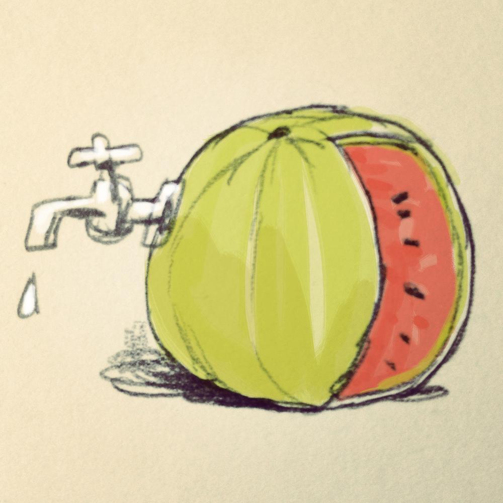 watermeloen2.jpg