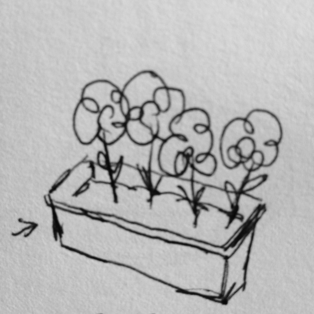 bloembak.JPG