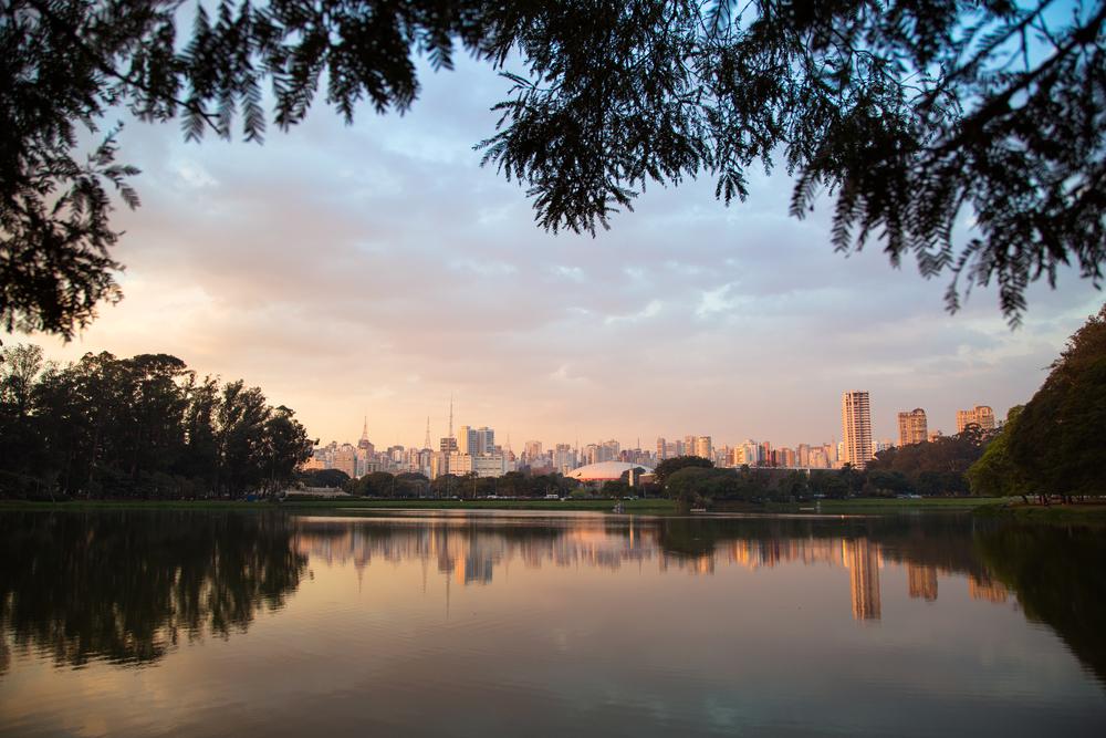 Sao_Paulo_Ibirapuera_071614_012.jpg