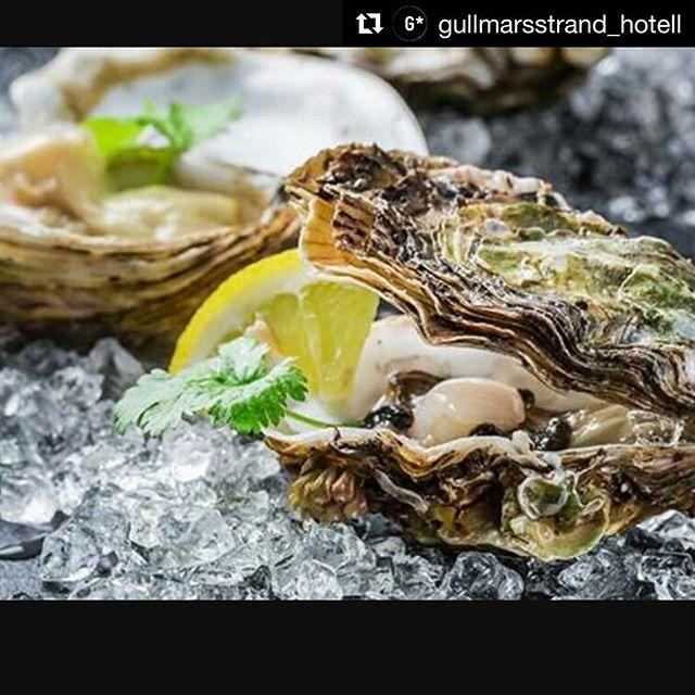 Kom till Gullmarsstrand och häng med oss en stund! mycket trevlig och uppskattat. Repost @gullmarsstrand_hotell ・・・ Boka in fredag kl 17. Då har vi ostron och champagne på vår veranda med Adriaan van de Plasse från Orust Shellfish. Boka gärna tel 0523-66  77 88. #gullmarsstrand0meterfrånhavet #fiskebäckskil #bohuslän #vastsverige #svenskamöten #vårbästatidärnu #ostronchampagne#fredag