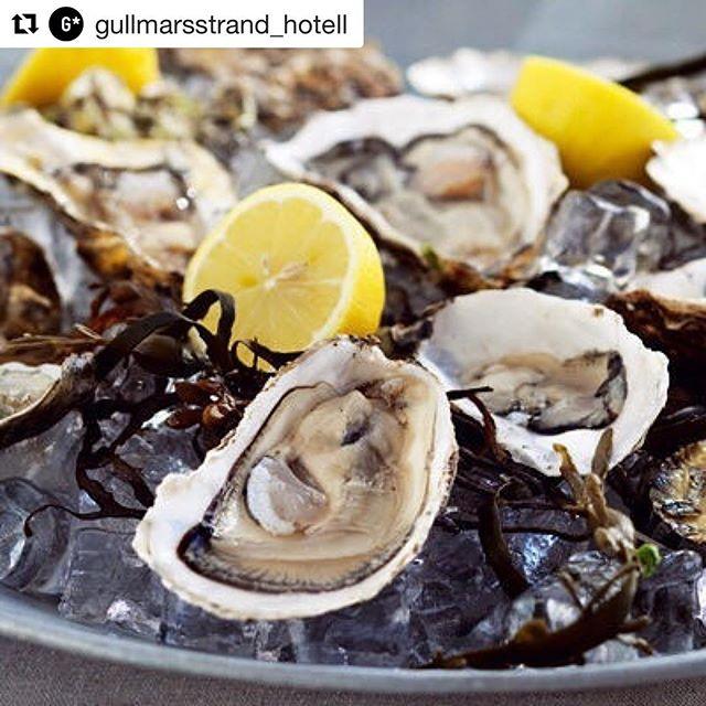 In boka nu! Repost @gullmarsstrand_hotell ・・・ Ni missar väl inte bästa starten på helgen idag? Färska dykplockade belon ostron och champagne på Gullmarsstrands veranda med Adriaan van Plass från Orust Shellfish. Välkomna! #gullmarsstrand0meterfrånhavet #fiskebäckskil #bohuslän #vårbästatidärnu  #fredagslyx #ostron #champagne
