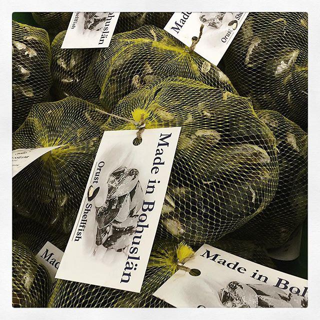 God morgon från musselfabriken ✌️#musslor #madeinbohuslän #smakapåvästsverige  #orustmat