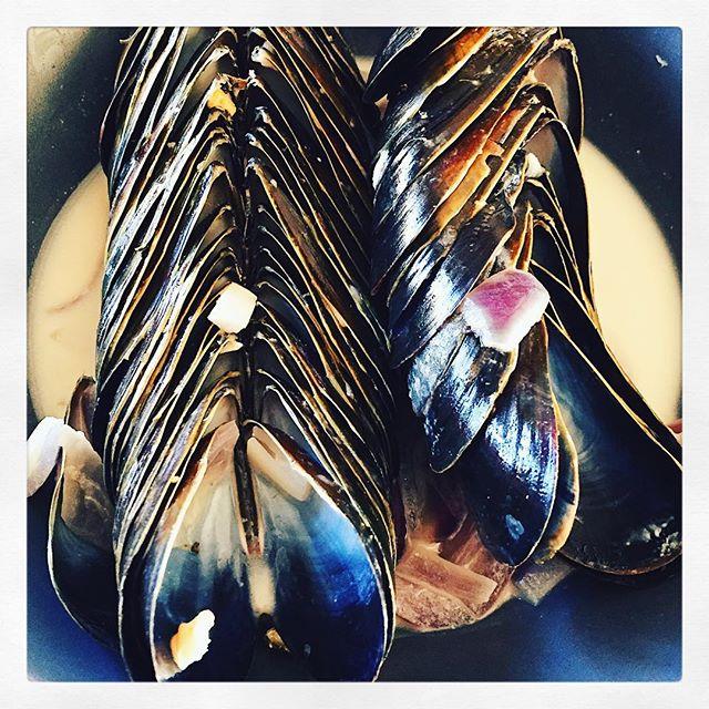 Mätt efter lördagslunchen 👌🏻#musslor #smakapåvästsverige #madeinbohuslän #orustmat