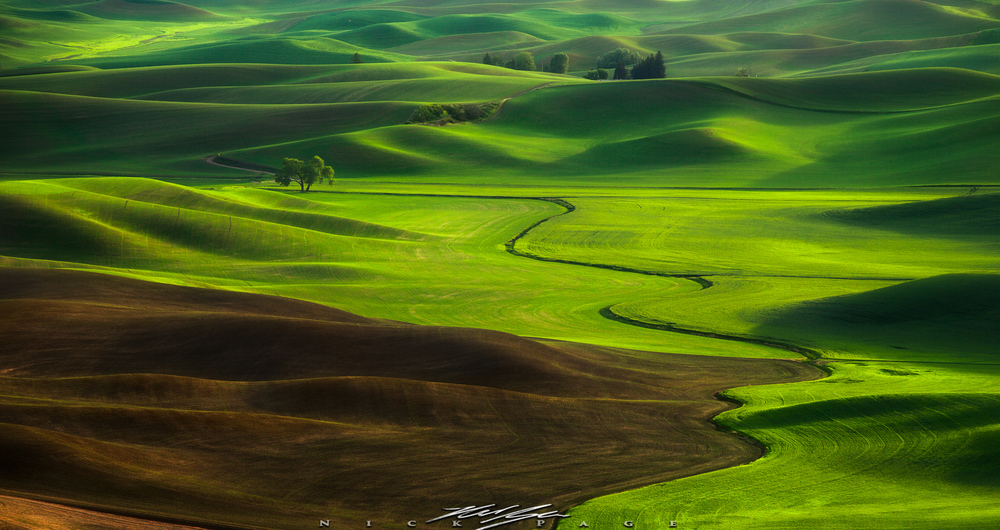 The views from Steptoe butte are some of the most fun to shoot, and Iconic photographs in all of the United States