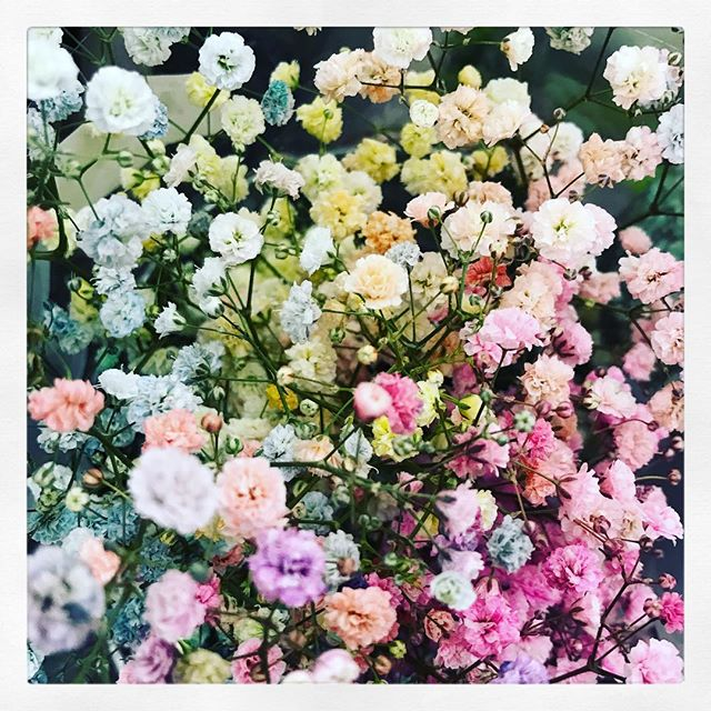 #obsessed with this #rainbow #babiesbreath ... 🦄🦄🦄🦄 . . . . . . . #againstallodds #aao #flowers #fashion #art #phonotgraphy #designerian #chicago #newyork #love #projectrunway