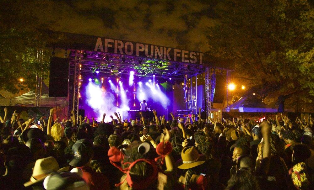 Afro Punk Festival circa. 2015