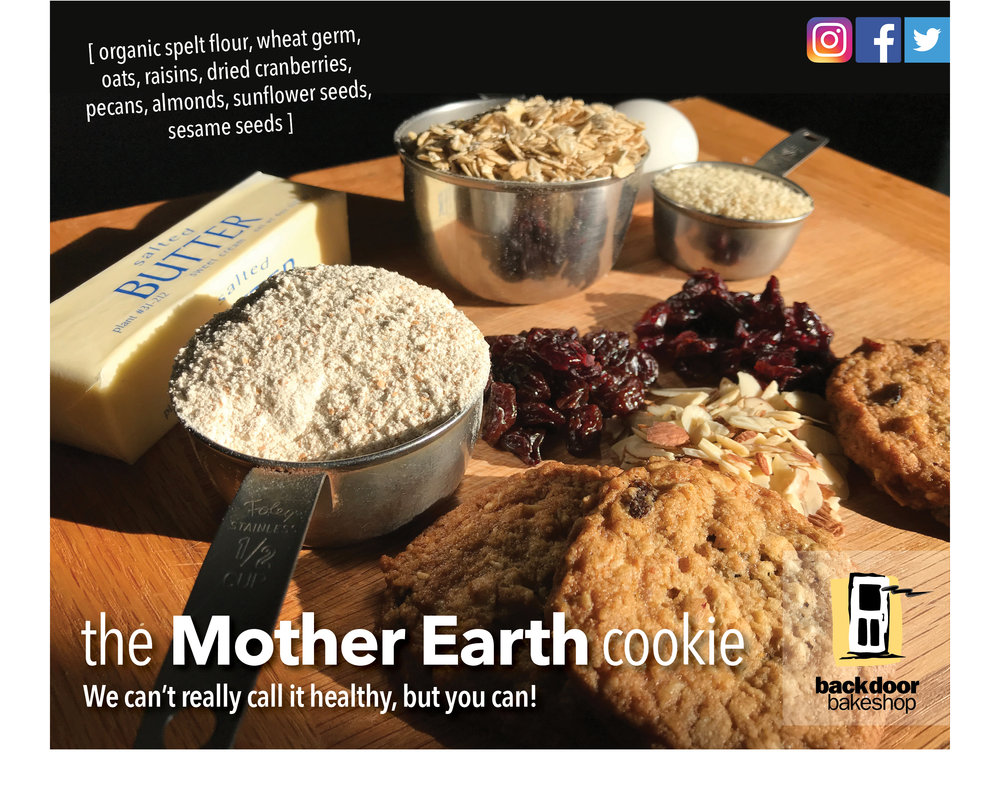 mother earth promo.jpg