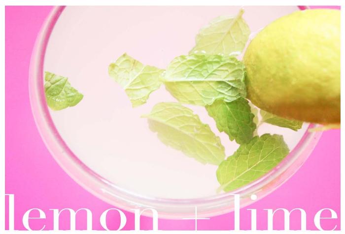Lemon-Lime Mocktail by the Fabulous Times