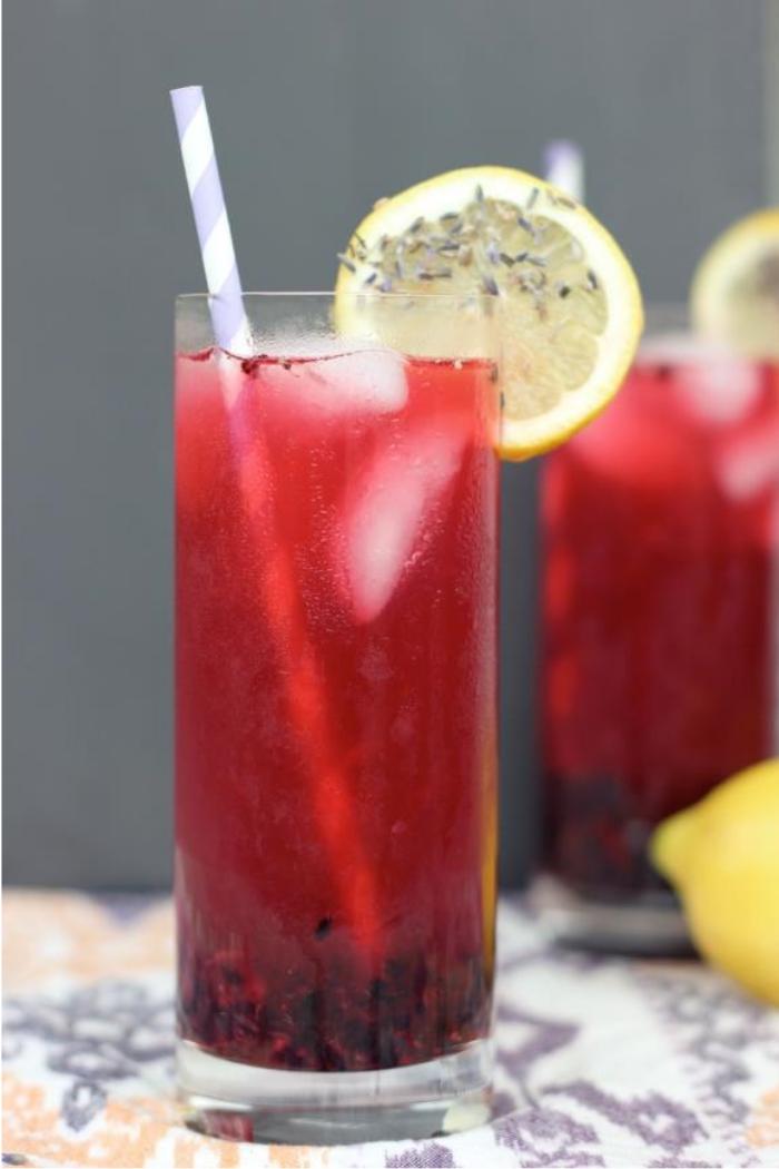 Blackberry Lavender Lemonade Mocktail by Free People