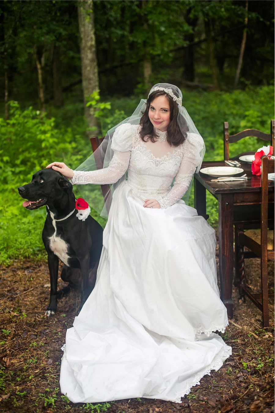 Tips for involving your pet in your wedding day - Paper Swallow Events