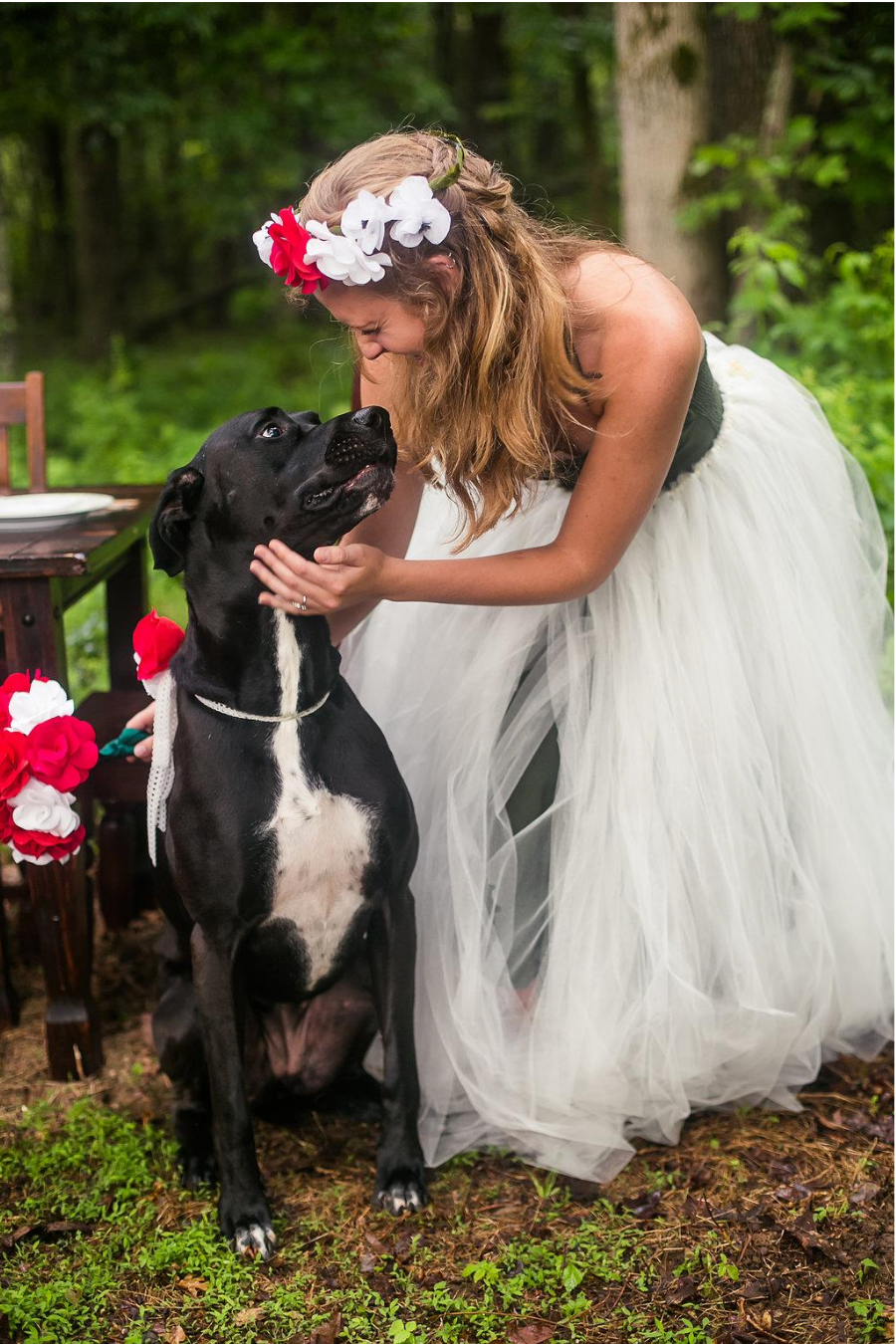 Tips for involving your pet in your wedding - Paper Swallow Events