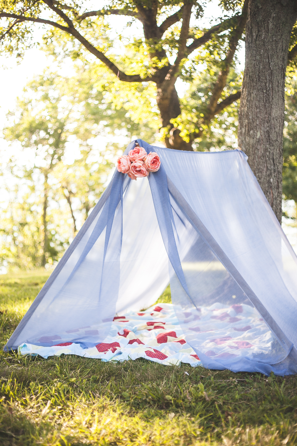 Sheer Tent Paper Swallow Events