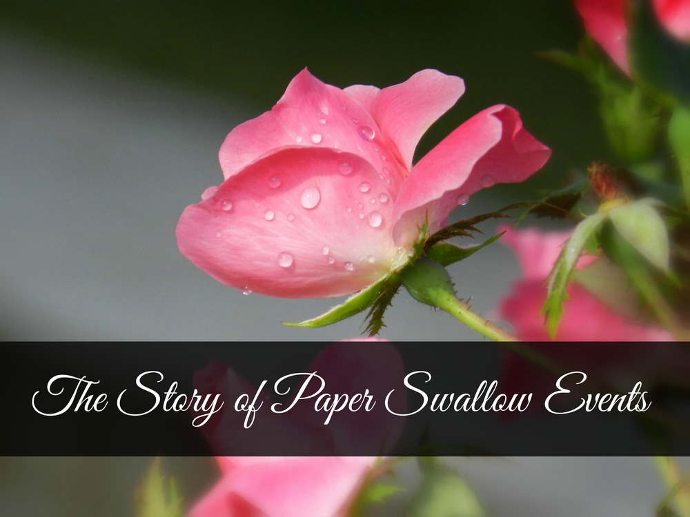 Blossoming Pink Rose - Paper Swallow Events