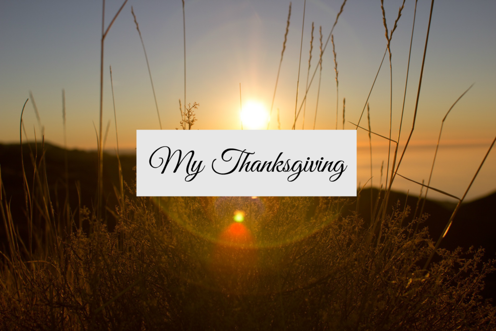 My Thanksgiving - Paper Swallow Events