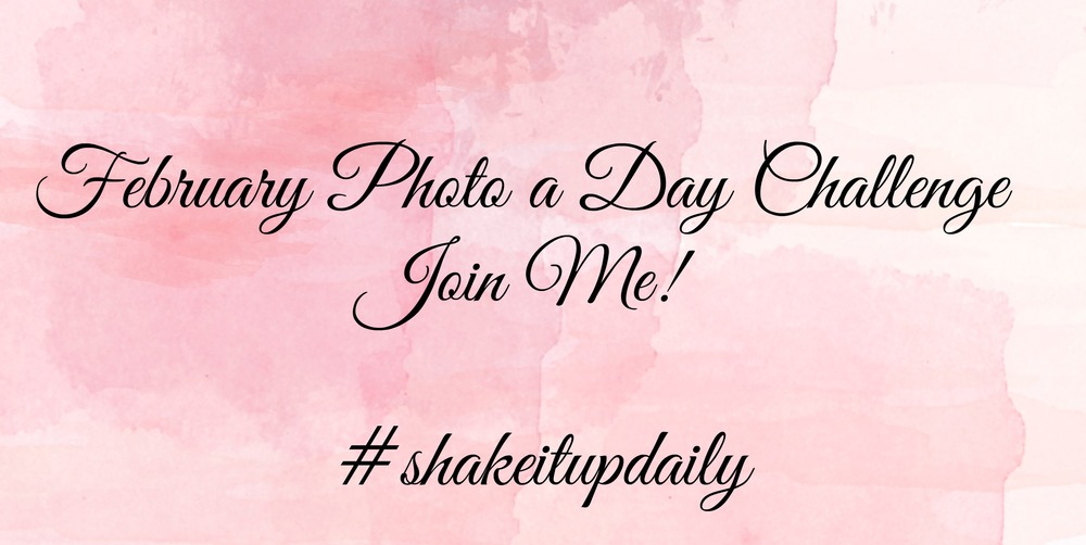 February Photo Challenge - Paper Swallow Events