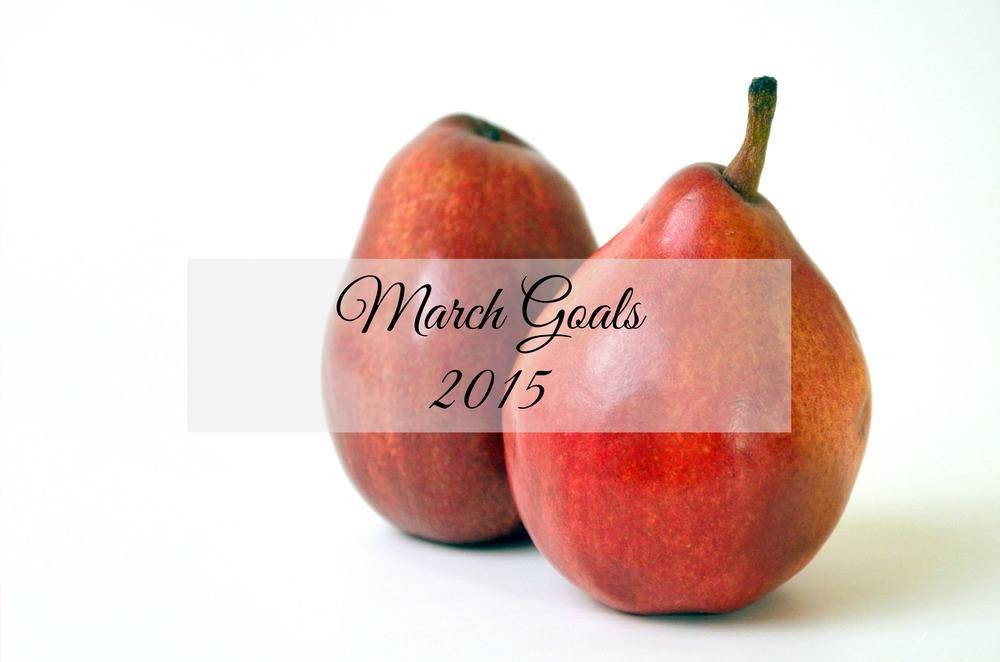 Monthly Goals: March 2015 - Paper Swallow Events