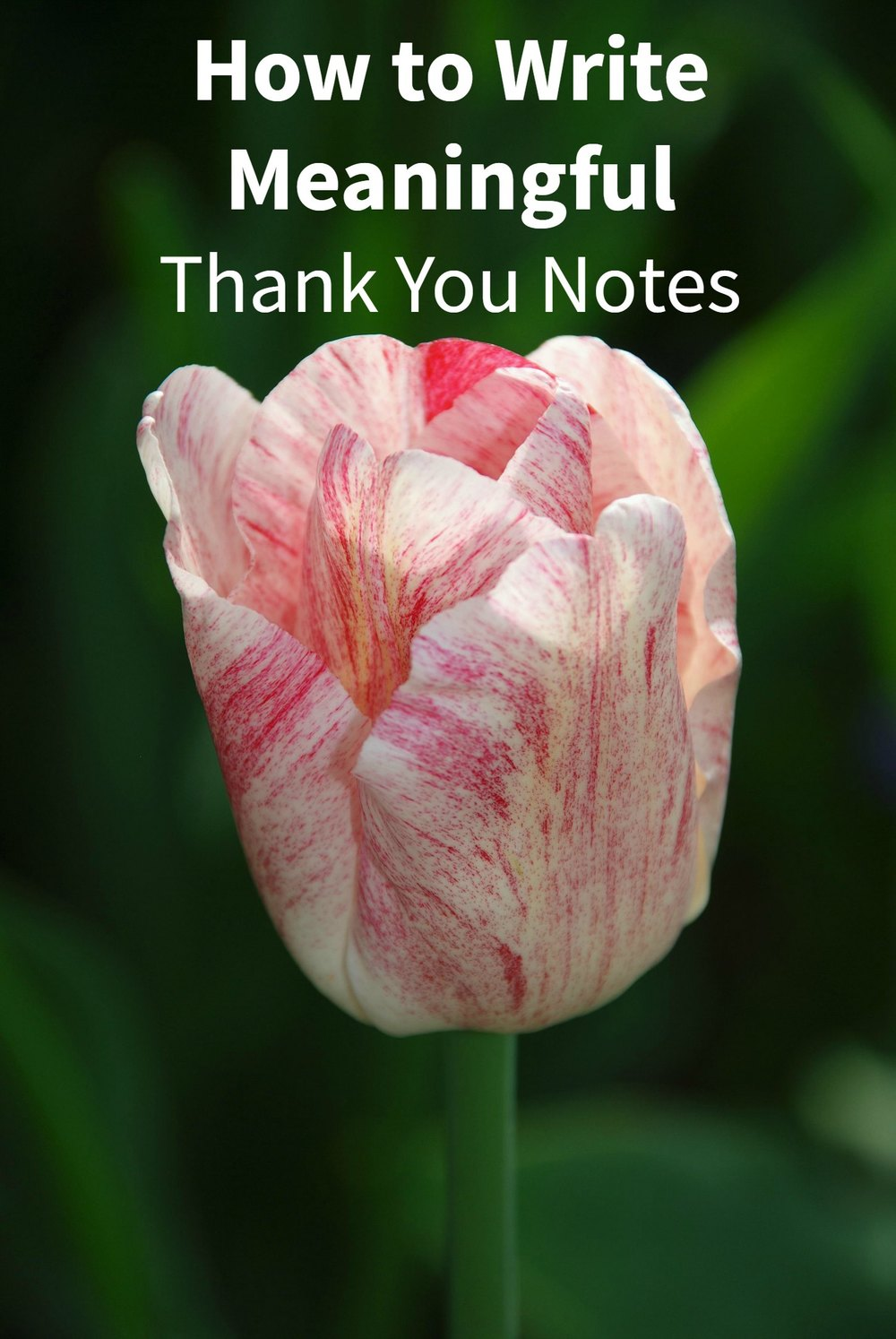 How to Write Meaningful Thank You Notes - Paper Swallow Events