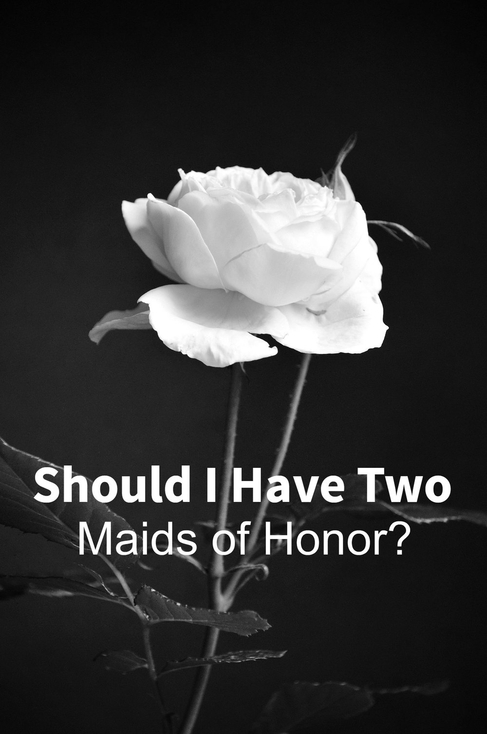Should I Have Two Maids of Honor - Paper Swallow Events