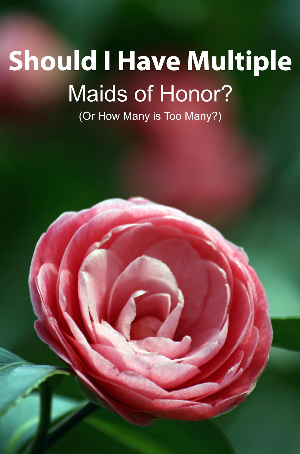 Should You Have Multiple Maids of Honor? How Many is Too Many? - Paper Swallow Events #wedding #etiquette