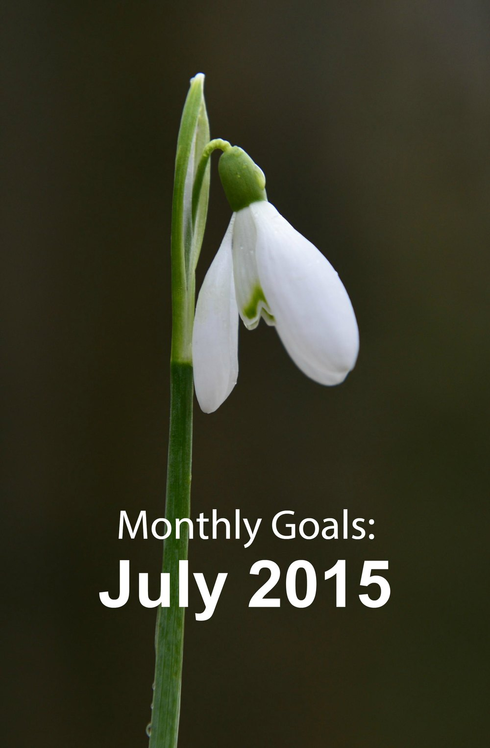 Monthly Goals: July 2015 - Paper Swallow Events