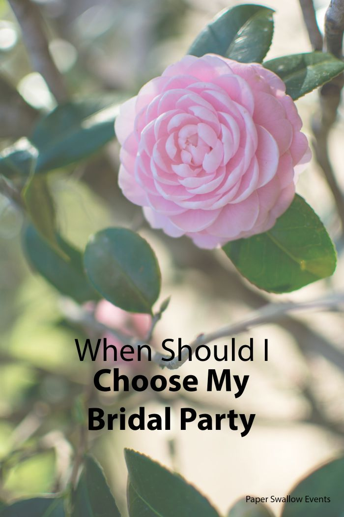 When should you choose your bridal party members? Some great tips to help you think through the perfect timing are up on the Paper Swallow Events' blog! @paperswalloweve