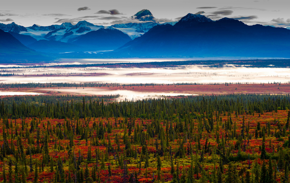 alaska fall colors photo tour