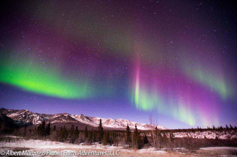 Charming Northern Lights Tour   Alaska Northern Lights Adventure Tour Awesome Design
