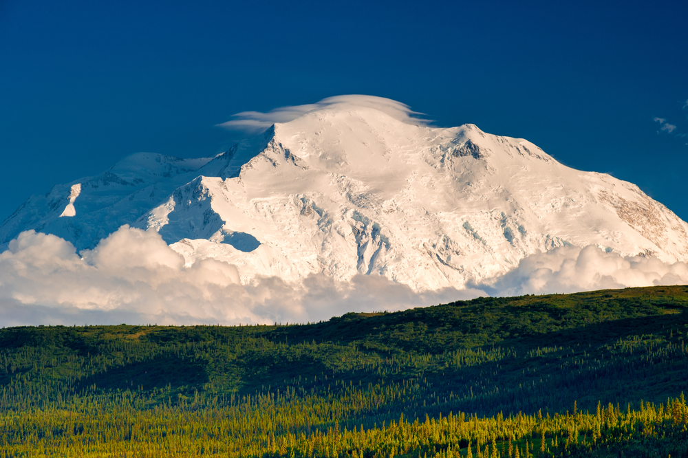 Trip to Denali National Park