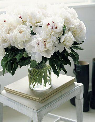-white peonies / via brabournefarm.blogspot.nl