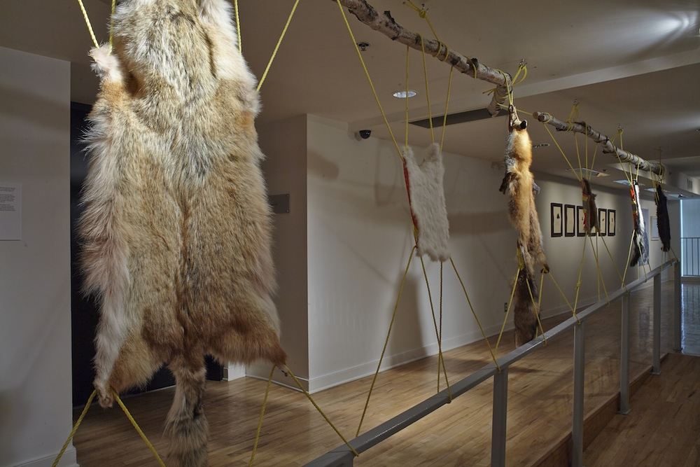Coyote, rabbit, fox, muskrat, skunk, beaver.   2014, furs, rope, safety vests, wood. Photos: M N Hutchinson