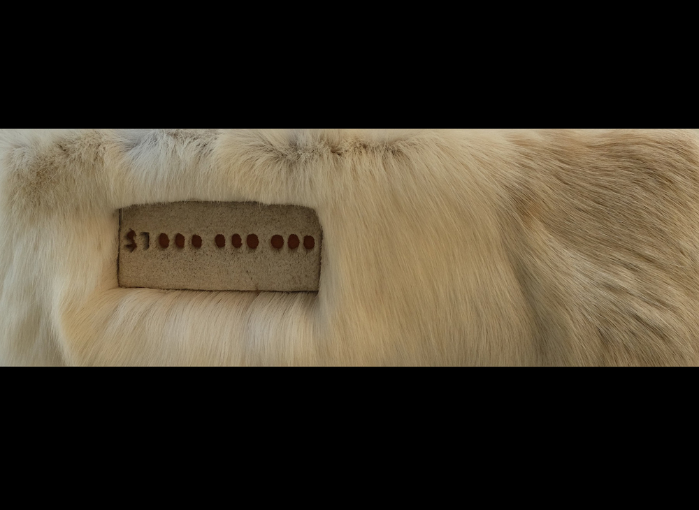 "Billion Dollar Caribou, 2014, caribou hair on elk hide, 20"" x 6""."
