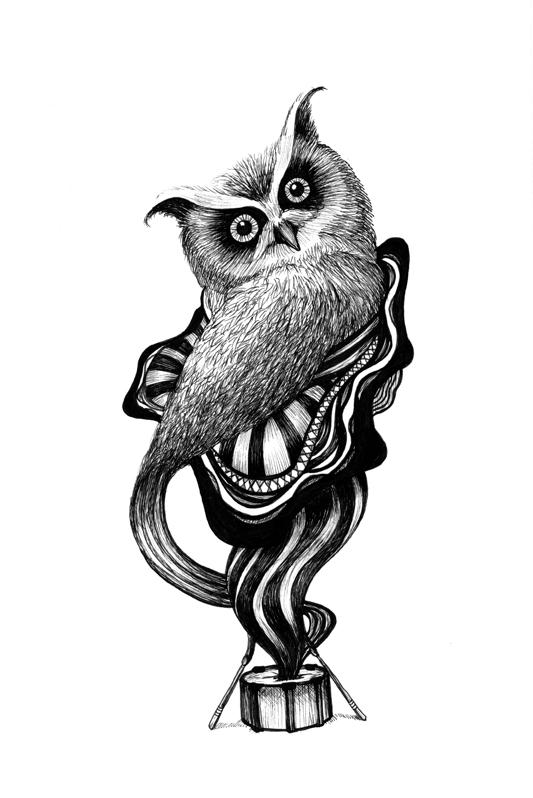 Owl Drummer