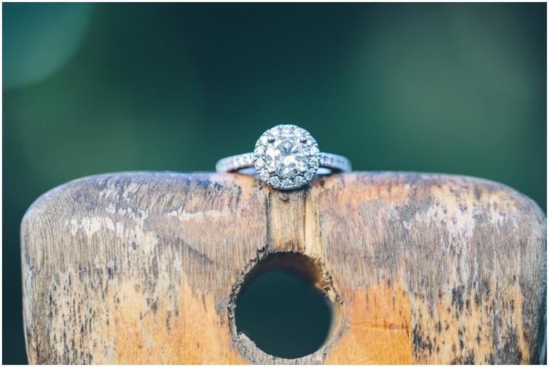 Longed gardens pennsylvania wedding photographer aaren lee photography