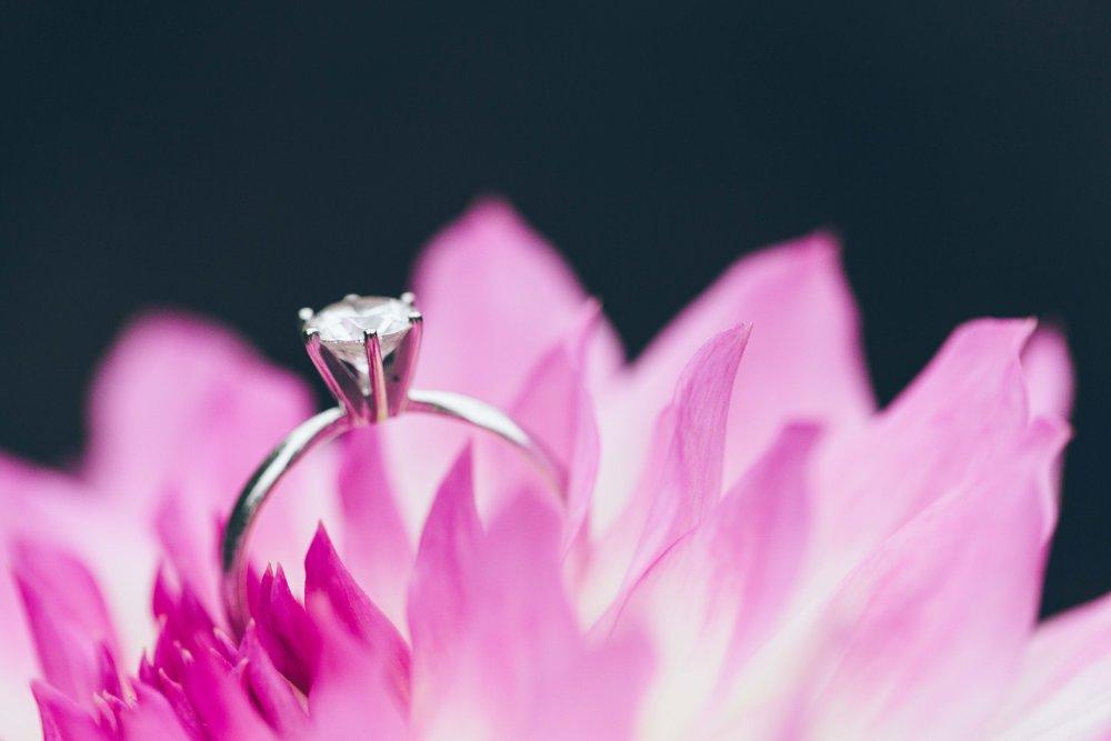 Aaren Lee Photography Longwood Gardens Philadelphia Wedding Photographer