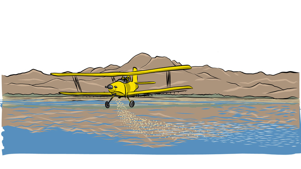 Crop Duster, Sutter Buttes