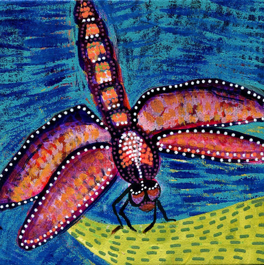 29 Dragonfly.jpg