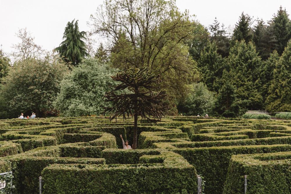 VanDusen - Botanical Garden