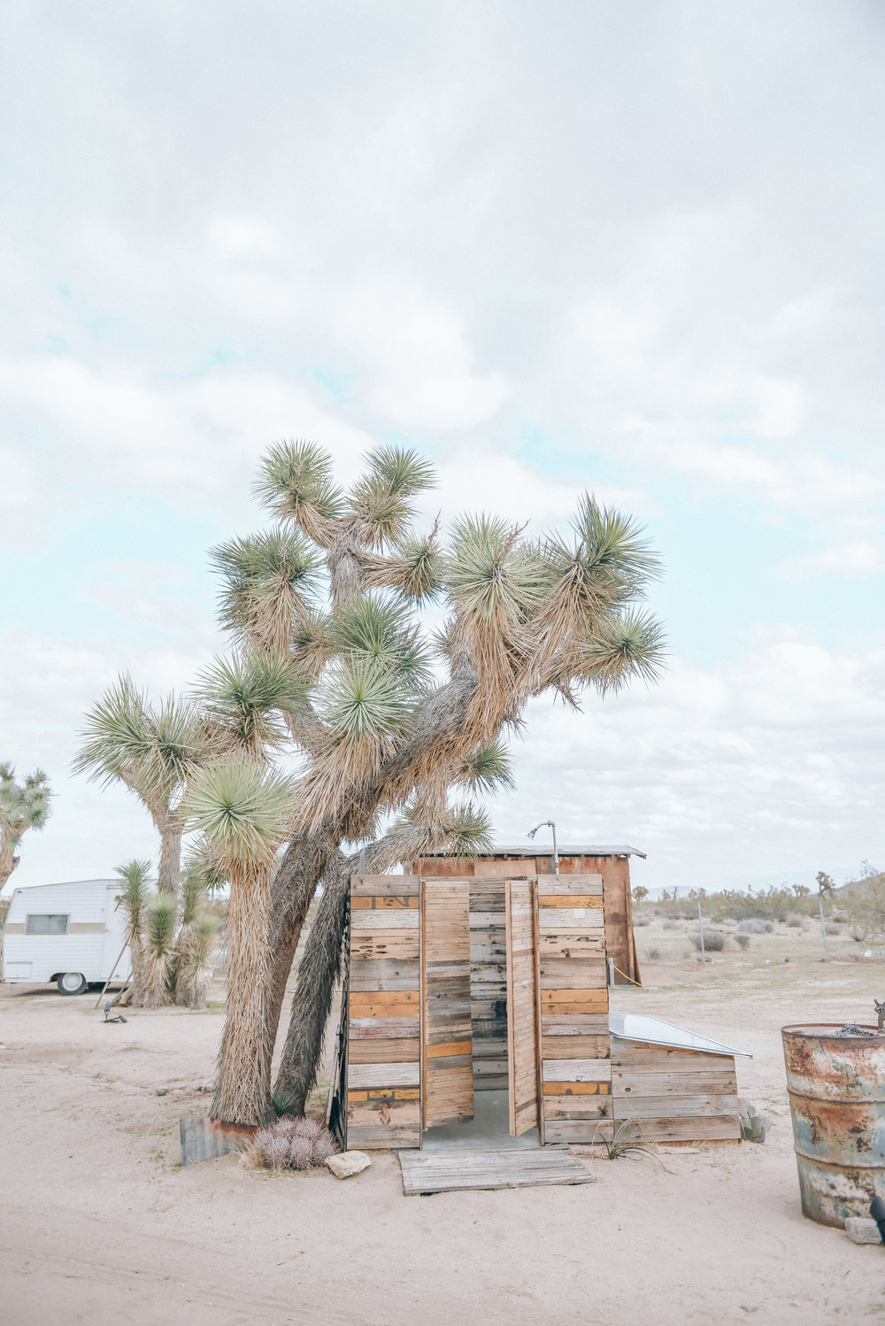 joshua-tree-acres-by-lisa-linh