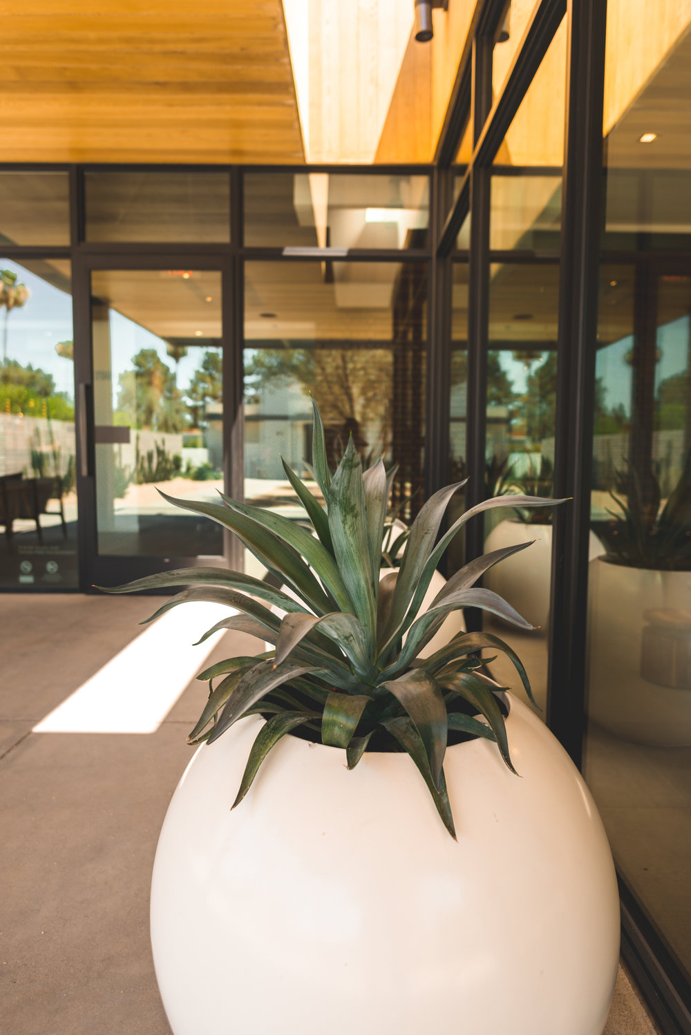 andaz-scottsdale-by-lisa-linh